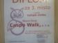 Diplom_Caspo-Walk